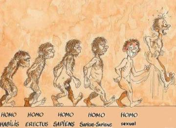 evolucao do homo